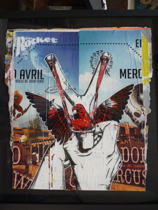 Indoor - 2014 - Livres et autres - Angry Birds