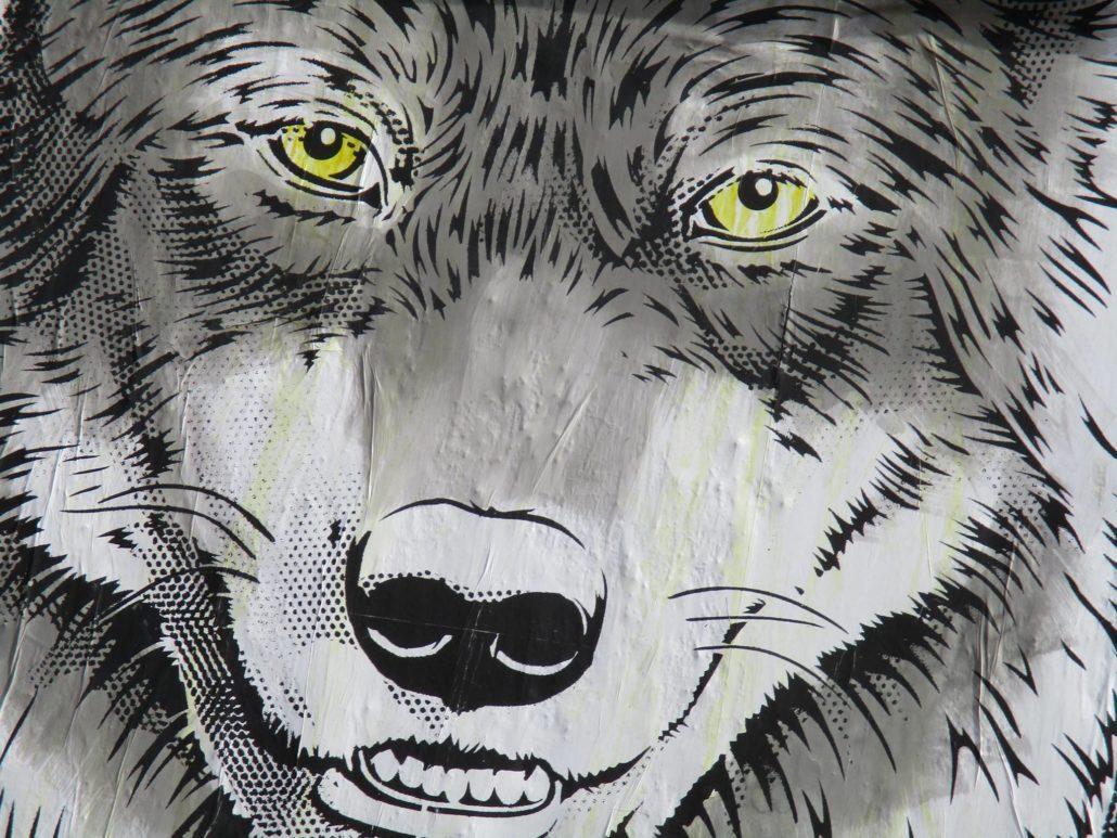 Outdoor - 2017 - Le MUR Oberkampf - Le loup et l'agneau - Détail