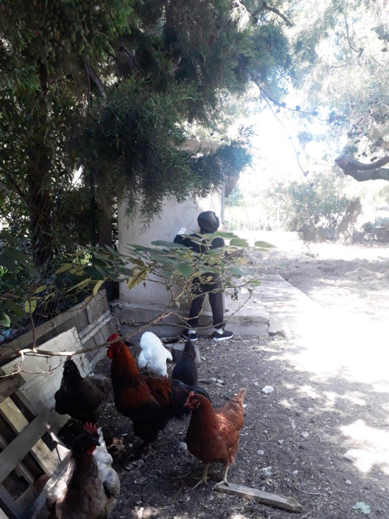 news-2018-stephane-moscato-emancipation-couvent-levat-details4