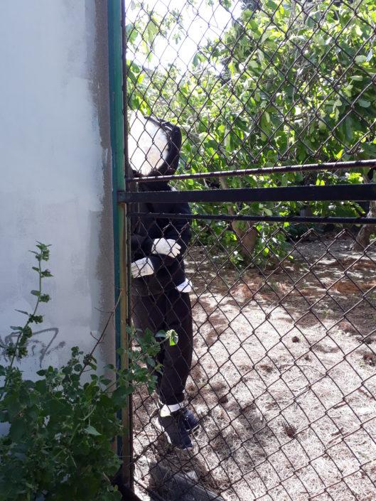 news-2018-stephane-moscato-emancipation-couvent-levat-un-poulailler-dans-un-details5